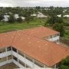 GUINEA 1 036
