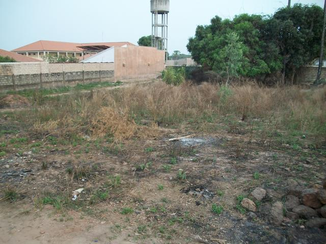Guinea 2010 054