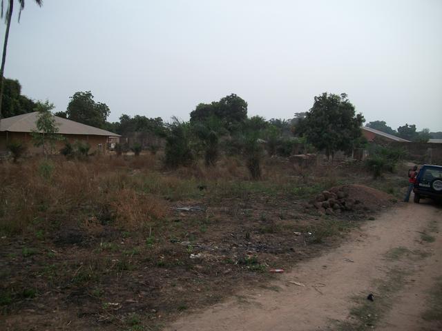 Guinea 2010 055