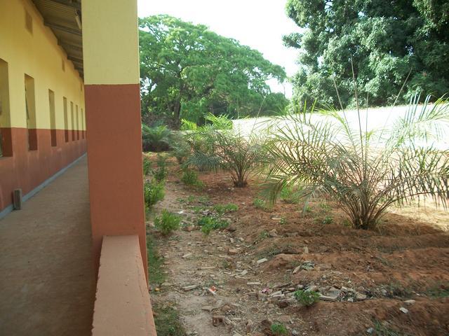Guinea 2010 087