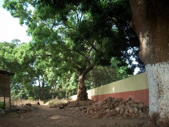 Guinea 2010 097
