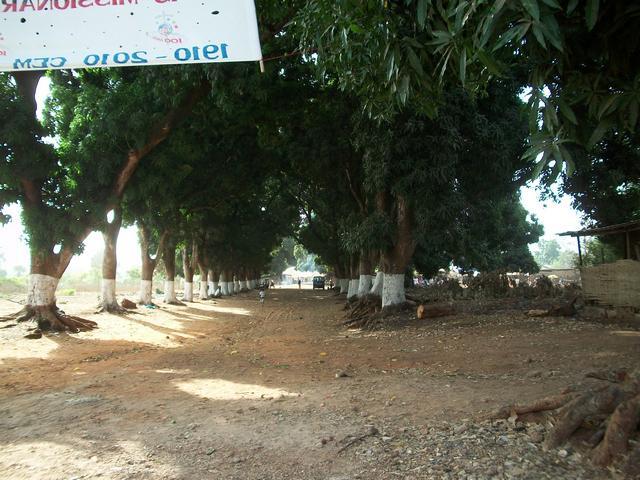 Guinea 2010 098