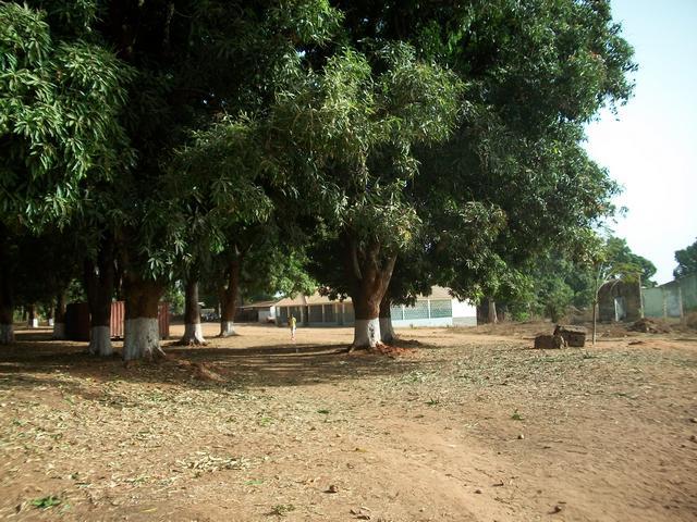 Guinea 2010 099