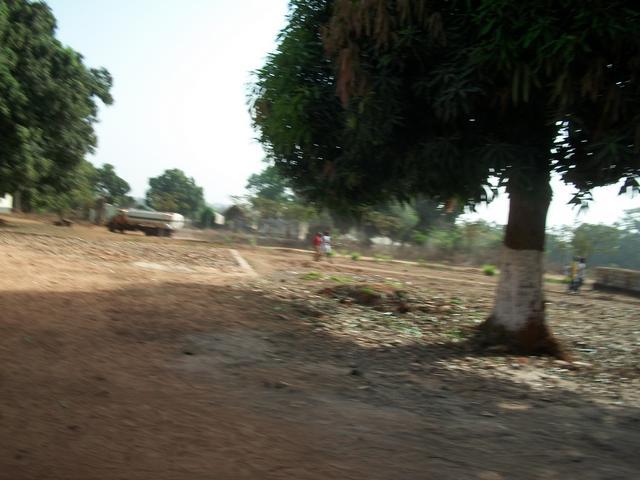 Guinea 2010 102