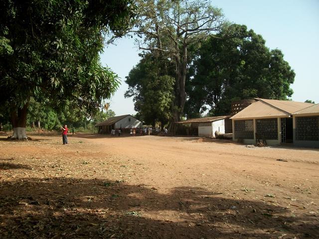 Guinea 2010 122