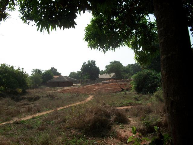 Guinea 2010 123
