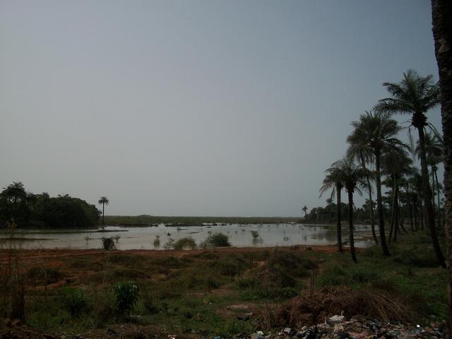Guinea 2010 262
