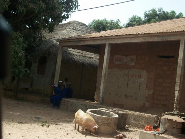 Guinea 2010 265
