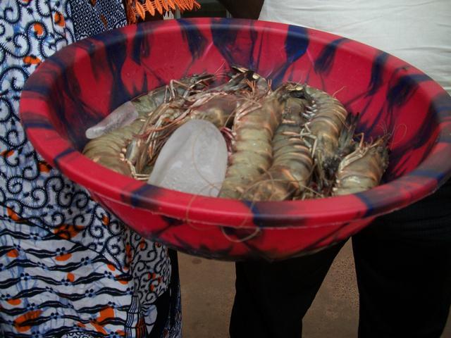 Guinea 2010 276
