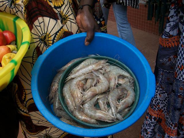 Guinea 2010 277