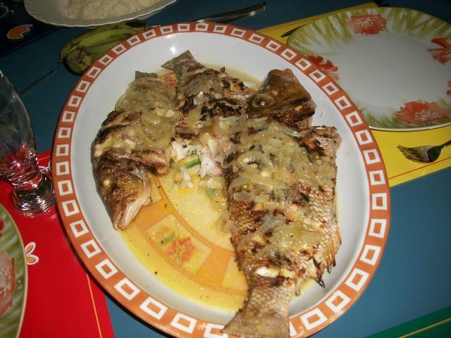 Guinea 2010 288
