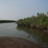 Guinea 2010 044