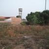 Guinea 2010 053
