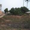Guinea 2010 056